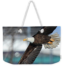 Weekender Tote Bag featuring the photograph Soaring Eagle by Coby Cooper