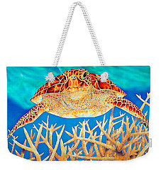 Sea  Turtle Soaring Over Staghorn Weekender Tote Bag