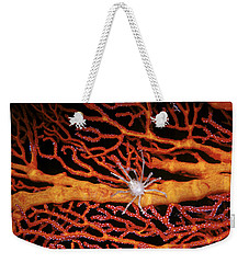 Soft Coral Crab On Red Gorgonian Weekender Tote Bag