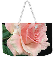 Weekender Tote Bag featuring the photograph Soft Pink Rose 1 by Jeannie Rhode