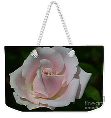 Weekender Tote Bag featuring the photograph Soft Pink Rose by Jeannie Rhode