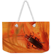Soldier Beetle Weekender Tote Bag