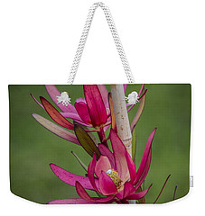 Weekender Tote Bag featuring the photograph Something Stunning  by Naomi Burgess