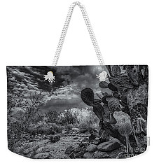 Weekender Tote Bag featuring the photograph Sonoran Desert 15 by Mark Myhaver