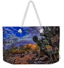 Weekender Tote Bag featuring the photograph Sonoran Desert 54 by Mark Myhaver