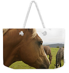 Weekender Tote Bag featuring the photograph Sorrel Horse Profile by Belinda Greb