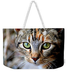 Weekender Tote Bag featuring the photograph Soul Cat by Deena Stoddard