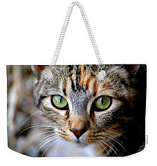 Soul Cat Weekender Tote Bag