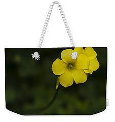 Sour Grass Weekender Tote Bag