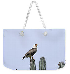 Weekender Tote Bag featuring the photograph Southern Crested-caracara Polyborus Plancus by David Millenheft
