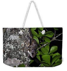 Southern Flying Squirrel Weekender Tote Bag