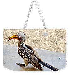 Southern Yellow-billed Hornbill In Kruger National Park-south Africa Weekender Tote Bag by Ruth Hager