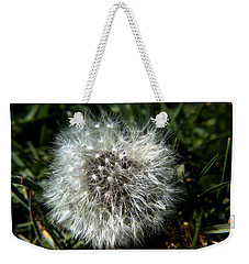 Weekender Tote Bag featuring the photograph Sparkler - Dandelion Flower by Ramabhadran Thirupattur