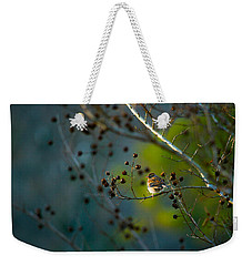 Sparrow In The Warm Light Weekender Tote Bag by Shelby  Young