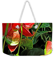 Weekender Tote Bag featuring the photograph Spathiphyllum Flowers Peace Lily by A Gurmankin