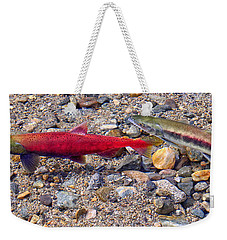 Weekender Tote Bag featuring the photograph Spawning Pair by Jim Thompson