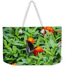 Spicebush Swallowtail Weekender Tote Bag by Angela DeFrias