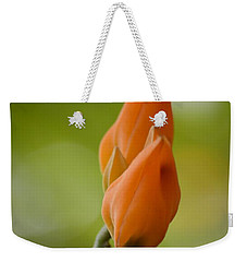 Spirit Of Spring Weekender Tote Bag by Sonali Gangane
