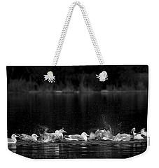 Weekender Tote Bag featuring the photograph Splashing Seagulls by Yulia Kazansky