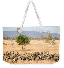 Spotted Hyenas Crocuta Crocuta Weekender Tote Bag by Panoramic Images