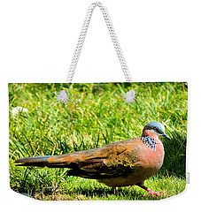 Weekender Tote Bag featuring the photograph Spotted Nape Dove by Kristine Merc