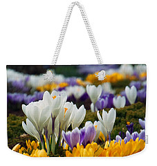 Weekender Tote Bag featuring the photograph Spring Crocus by Dianne Cowen