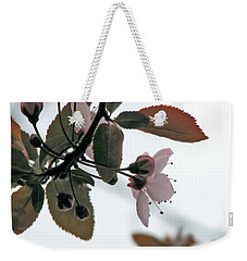 Weekender Tote Bag featuring the photograph Spring Comes Softly by Chris Anderson