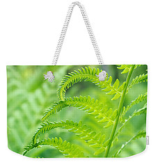 Weekender Tote Bag featuring the photograph Spring Fern by Lars Lentz