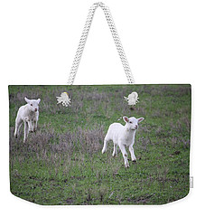 Spring Has Sprung Weekender Tote Bag by Donna  Smith