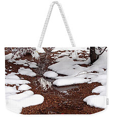 Weekender Tote Bag featuring the photograph Spring Into Winter by Kerri Mortenson