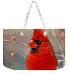 Spring Male Norther Cardinal Weekender Tote Bag by Debbie Portwood
