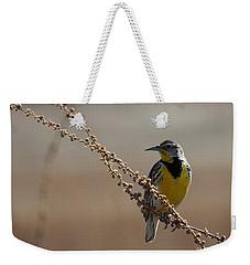 Spring Meadowlark Weekender Tote Bag by Marty Fancy