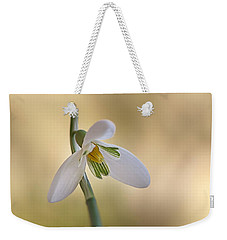 Spring Messenger Weekender Tote Bag