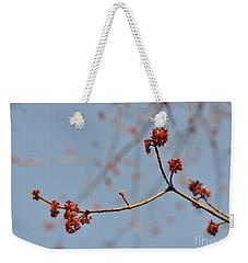 Spring Promise Weekender Tote Bag by Jola Martysz