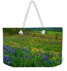 Spring Storm Passing Weekender Tote Bag by Mike  Dawson