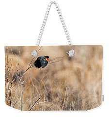Springtime Song Weekender Tote Bag by Bill Wakeley