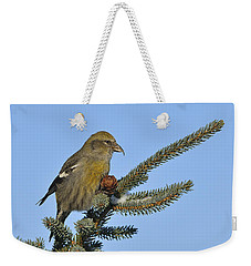 Spruce Cone Feeder Weekender Tote Bag by Tony Beck