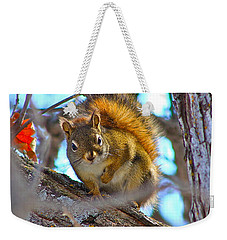 Squirrel Duty. Weekender Tote Bag
