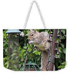 Squirrel Eating Nuts Weekender Tote Bag