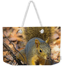 Squirrel Weekender Tote Bag