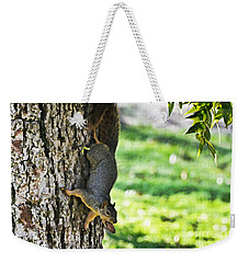 Squirrel With Pecan Weekender Tote Bag by Debbie Portwood