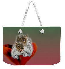 Squirrels Valentine Weekender Tote Bag by Mike Breau