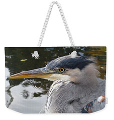 Weekender Tote Bag featuring the photograph Sr Heron  by Cheryl Hoyle