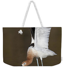 Weekender Tote Bag featuring the photograph Sstretchhh by Bryan Keil