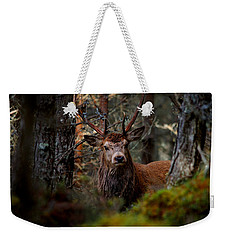 Stag In The Woods Weekender Tote Bag