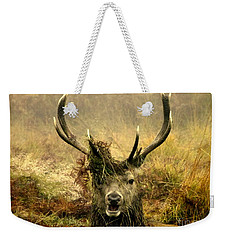 Stag Party The Series. One More For The Road Weekender Tote Bag by Linsey Williams