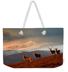 Stags At Strathglass Weekender Tote Bag