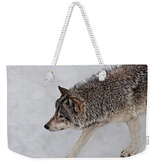 Weekender Tote Bag featuring the photograph Stalker by Bianca Nadeau