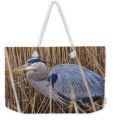 Stalking Fish In The Reeds Weekender Tote Bag