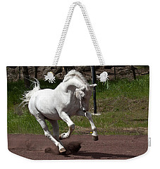 Weekender Tote Bag featuring the photograph Stallion D4052 by Wes and Dotty Weber